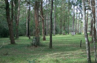 Picture of Lot 3 Whites Road, Woodburn NSW 2472