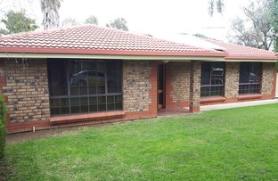 Picture of 11 Mainwaring Street, Willunga SA 5172