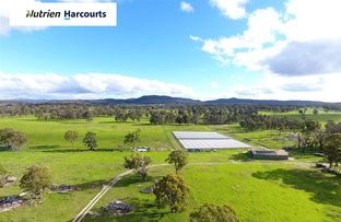 Picture of 957 Mt Tully Road, Stanthorpe QLD 4380