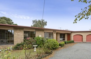 Picture of 12 Leahy Court, Colac VIC 3250