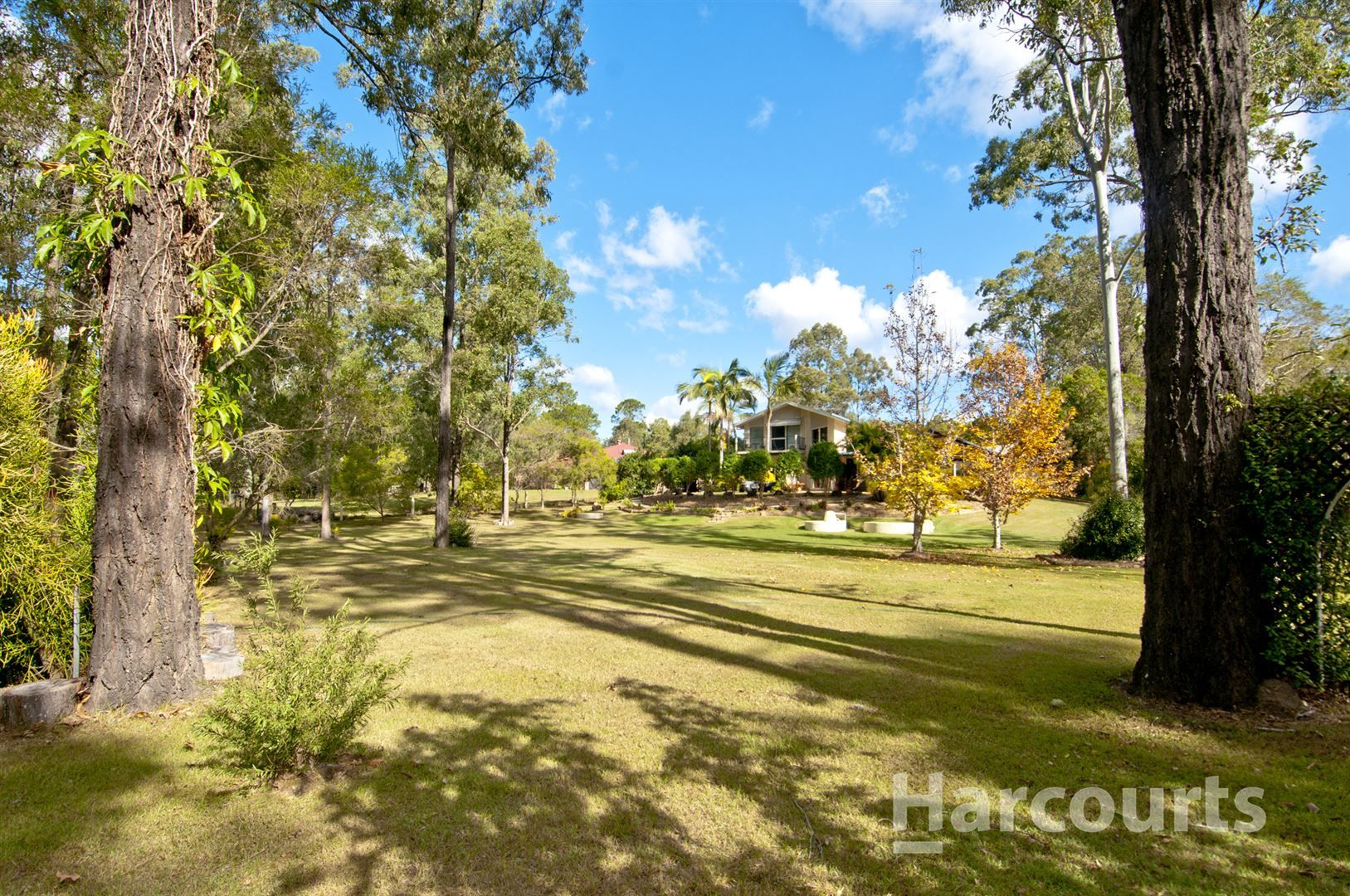 33 Tigercat Court, Greenbank QLD 4124, Image 0