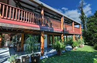 Picture of Daintree Manor/122 Forest Creek Rd, Forest Creek QLD 4873
