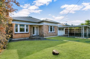Picture of 40 Daly Street, Kurralta Park SA 5037