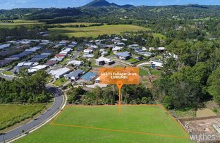 Picture of Lot 75 Fullager Drive, Eumundi QLD 4562