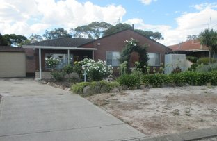 Picture of 16 Hakea Place, Katanning WA 6317