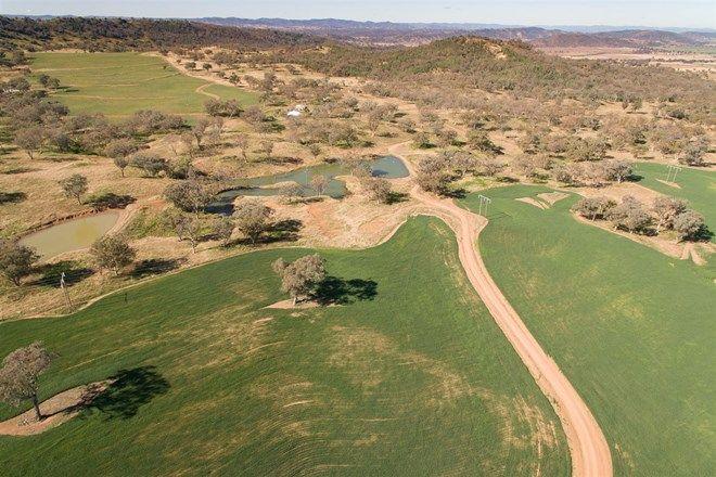 "Picture of ""Pepper Trees"" Oakhampton Road, BARRABA NSW 2347"