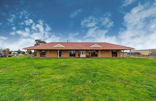 Picture of 23 Malcolm Street, Kalkallo VIC 3064