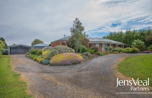Picture of 8 Creek Street, Miners Rest VIC 3352