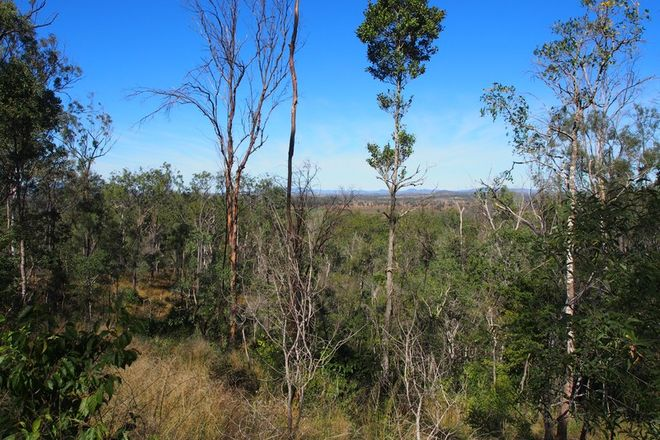 Picture of LOT 39 NIELSONS ROAD, GOOD NIGHT QLD 4671