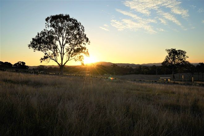 Picture of Lot 8 Caballo Way, KILCOY QLD 4515