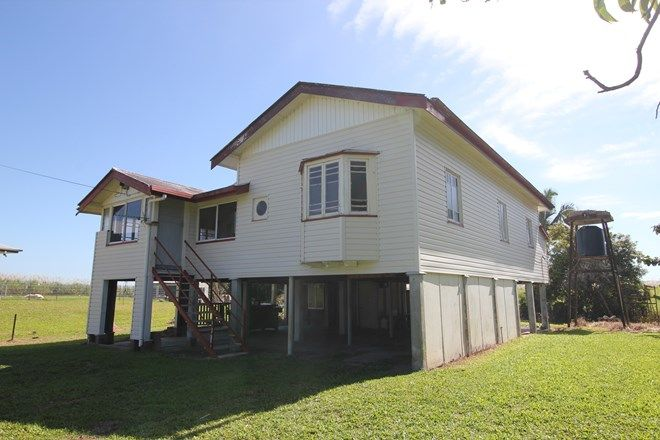 Picture of 253 Four Mile Road, BRAEMEADOWS QLD 4850