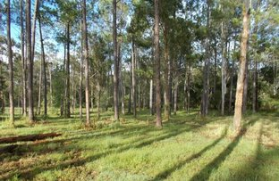 Picture of Arborcrescent Rd, Glenwood QLD 4570