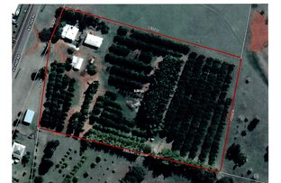 Picture of 258 ATC HALL ROAD, North Isis QLD 4660