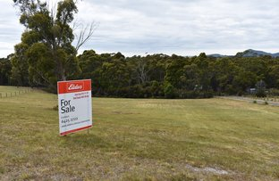 Picture of 38 Allegra Drive, Heybridge TAS 7316