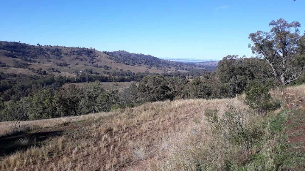 2359 Pembroke Road, Cassilis NSW 2329, Image 1