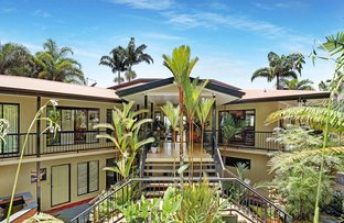Picture of 10 Rhapis Court, Whitfield QLD 4870