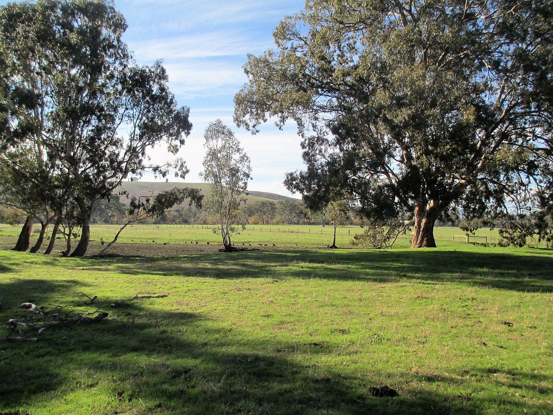 188 Whanregarwen Road, Alexandra VIC 3714, Image 2