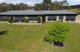 Picture of 471 Pomonal Road, Black Range, Stawell VIC 3380