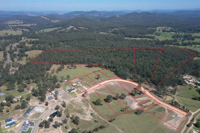 Picture of Lot 311, 3 Neville Road, BEECHWOOD NSW 2446