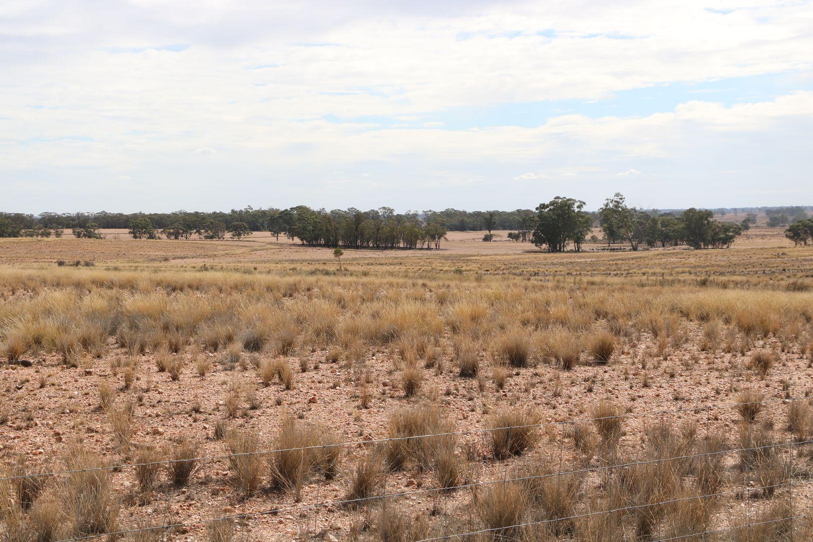 468 EMU VALLEY LANE, Tullamore NSW 2874, Image 1