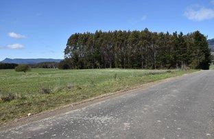 Picture of Lot 1 Scotts Road, Mole Creek TAS 7304
