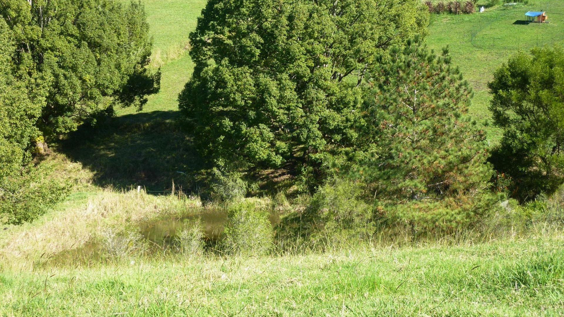 Lot 22/150 Hydes Creek  Road, Bellingen NSW 2454, Image 2