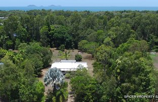 Picture of 62 Paradise Palm Drive, Tully Heads QLD 4854