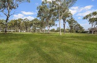 Picture of Llandilo NSW 2747