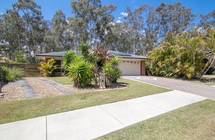 Picture of 12 Maple Avenue, Camira QLD 4300