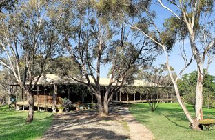 Picture of 121 Douglas Close, Carwoola NSW 2620