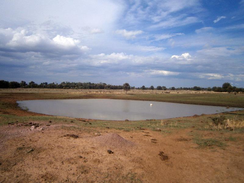 Jandowae QLD 4410, Image 0
