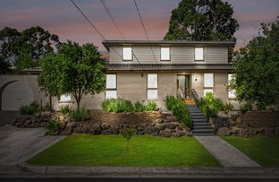 Picture of 1 Suzanne Court, Ringwood North VIC 3134
