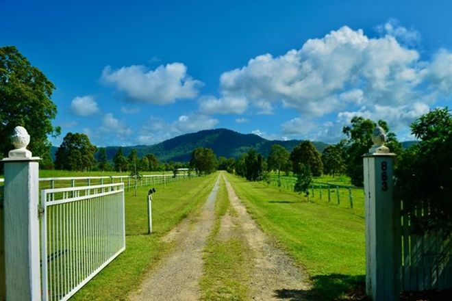 Picture of 863 Kilcoy-Beerwah Road, CEDARTON QLD 4514