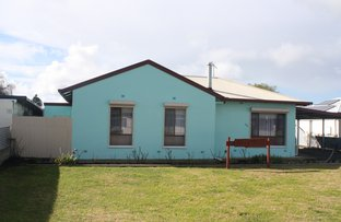 22 Williams Road, Millicent SA 5280