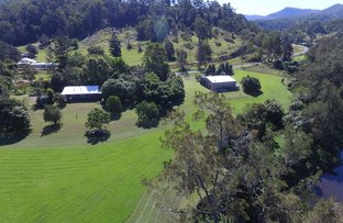 Picture of 672 Gradys Creek Rd, Kyogle NSW 2474