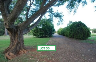 Picture of Lot 50 Shannon Park Road, Cabarlah QLD 4352