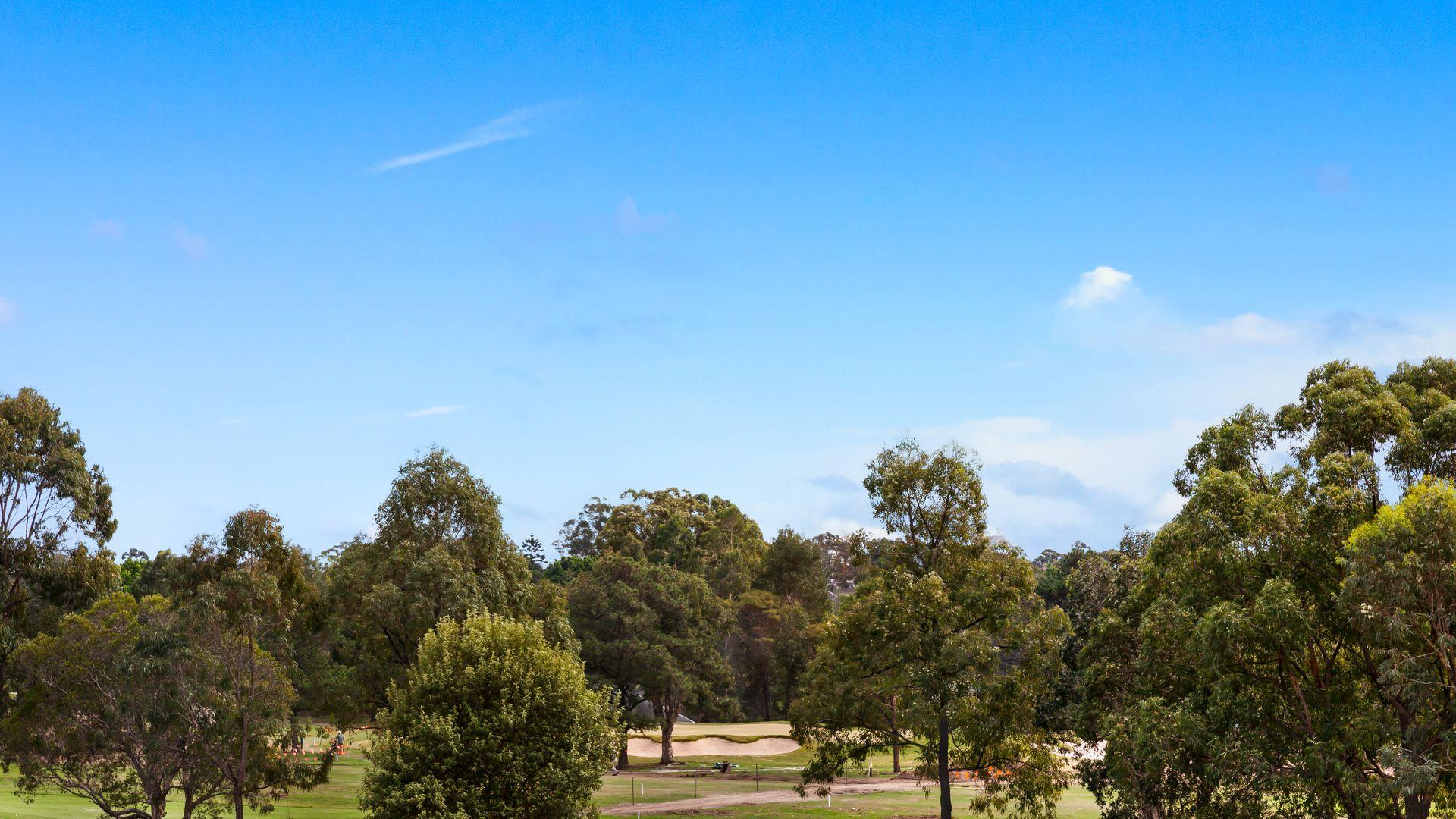 Centenary Drive, Strathfield, NSW 2135, Image 8