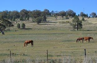 Picture of 1688 Kamilaroi Highway, Quirindi NSW 2343