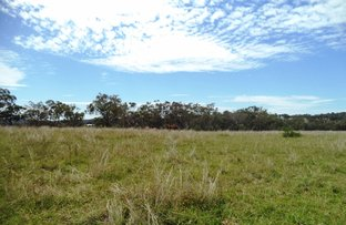 Picture of 427A Old Bundarra Rd, Inverell NSW 2360