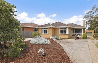 Picture of 11 Sheridan Street, Hamlyn Heights VIC 3215