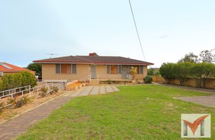 Picture of 251 Rockingham Road, Spearwood WA 6163