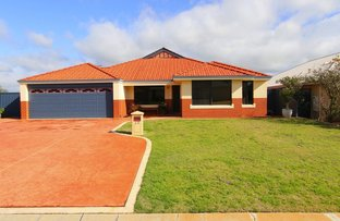 Picture of 13 Halfpenny Ave, Byford WA 6122