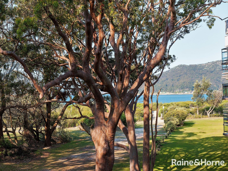 15/1 Intrepid Close, Nelson Bay NSW 2315, Image 1