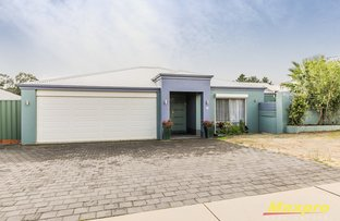 Picture of 16 Camellia Loop, Forrestfield WA 6058