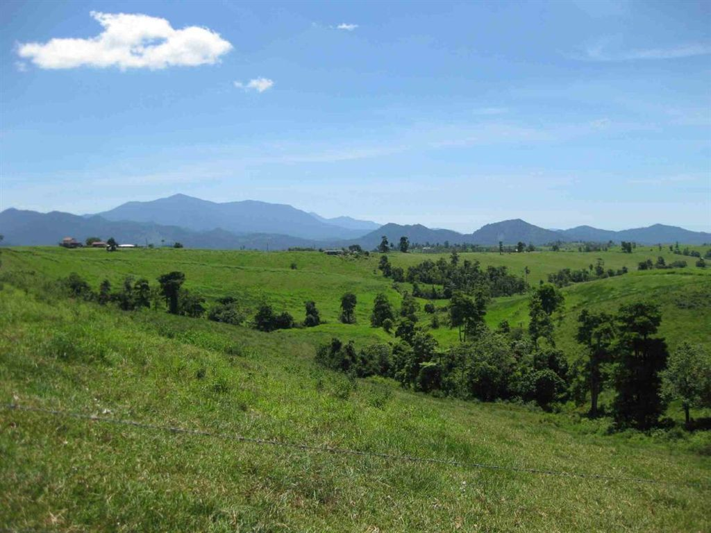2008 Palmerston Highway, East Palmerston QLD 4860, Image 2