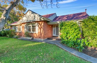 Picture of 1 Hale Avenue, Hawthorn SA 5062