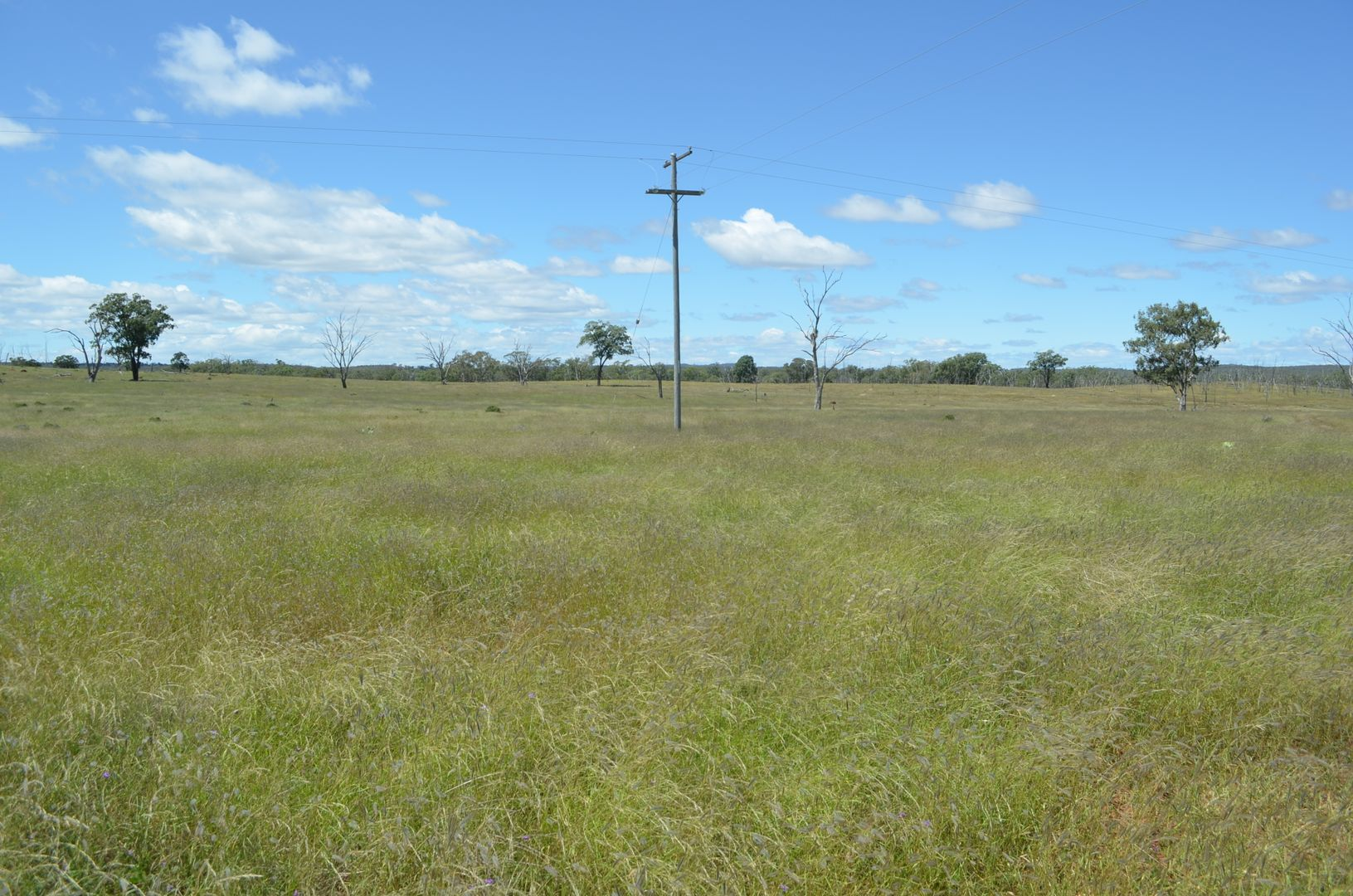 0 Mosquito Creek Road, Mosquito Creek QLD 4387, Image 2