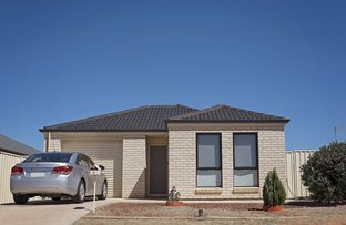 3 Callaghan Court, Whyalla Stuart SA 5608