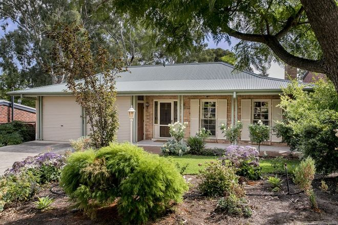 Picture of 7A Nilpinna Street, BURNSIDE SA 5066
