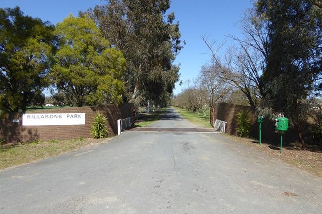 Picture of 279 Walbundrie Road, CULCAIRN NSW 2660